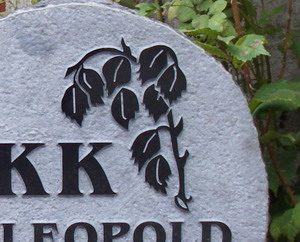 hauakivi-kiviraie-reljeef